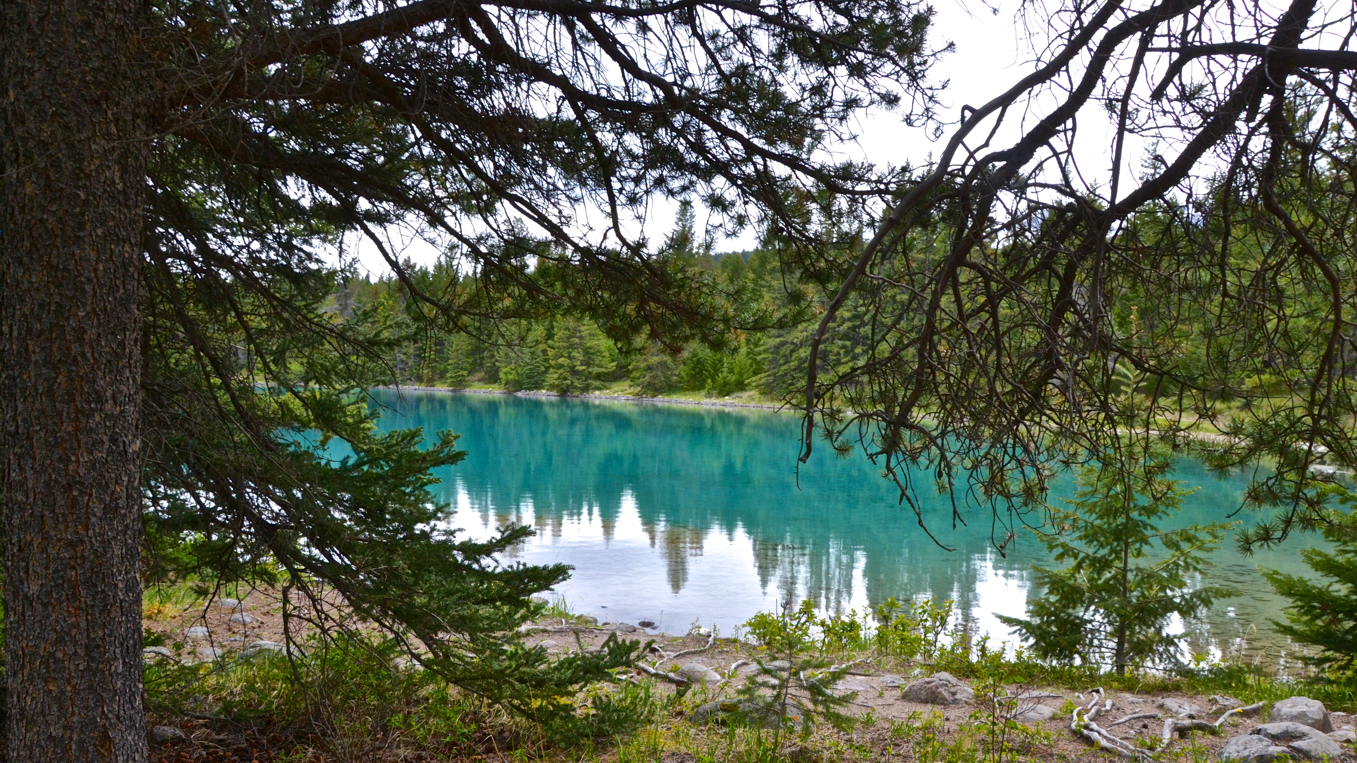 Jasper_2012_Lake_01